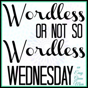 Wordless Wednesday Link Up on Easy Green Mom