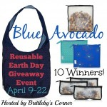 blue-avocado-blogger-opp-300x300